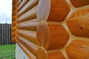 Деревянные бани из сруба и бруса размером 6 на 6 метров