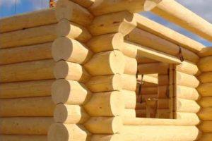 Производство срубов домов на заказ