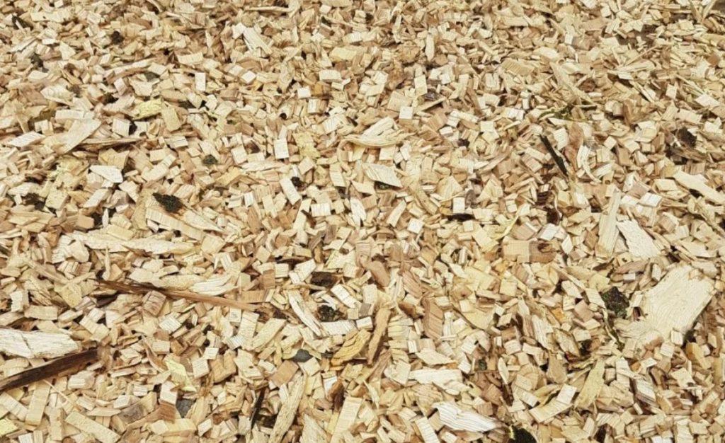 Сырье для биологической обработки древесины